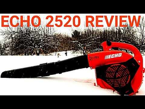 ECHO PB 2520 Blower Review