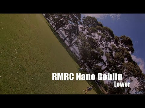readymade-rc-nano-goblin--lower