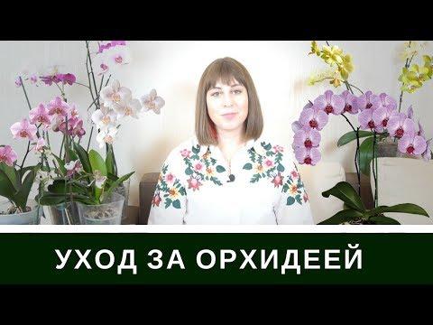 https://www.youtube.com/watch?v=iK6xvC-Z7CE