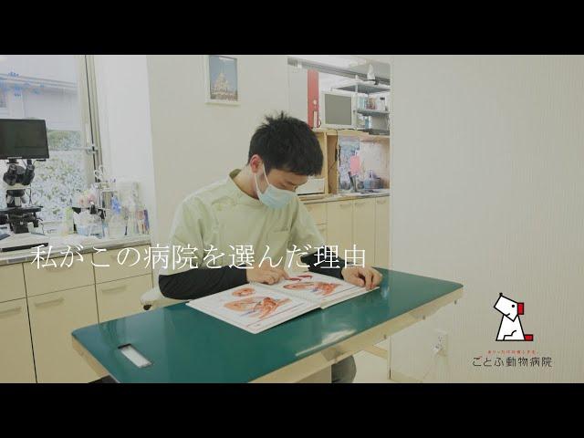 【採用動画】ごとふ動物病院 獣医師採用動画