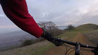 Pleasanton Ridge - Ridgeline trail 1/2 and black angus