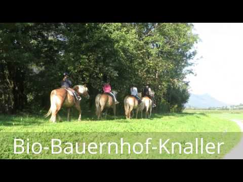 Riding at the Bio Bauernhof knaller next the river Gail