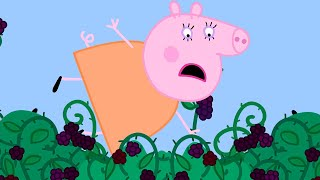 Peppa Pig Official Channel   Mummy Pig Best Bits   Mummy Pig Boo Boo Moments