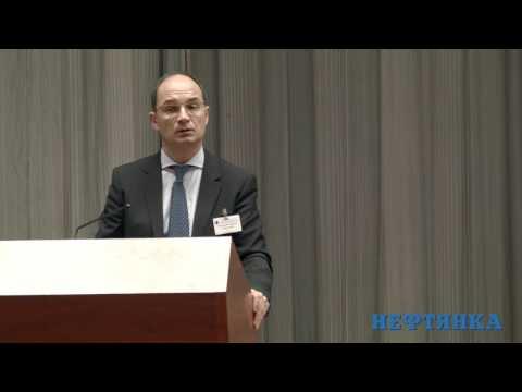 Нестеренко В.Г. «Текущие проблемы актуализации лицензий на право пользования недрами»