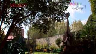 preview picture of video 'Pachuca (La Capital de Hidalgo)'
