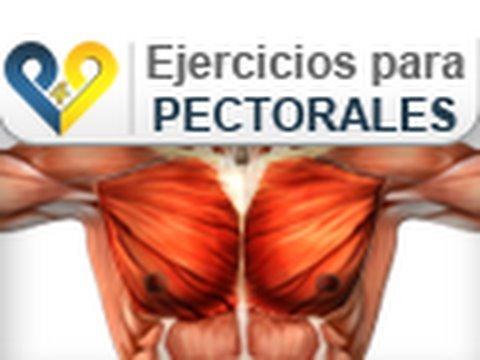 ejercicios para pectorales sin pesas yahoo dating