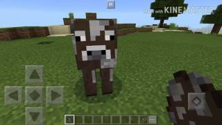 I am COW — in MINECRAFT??