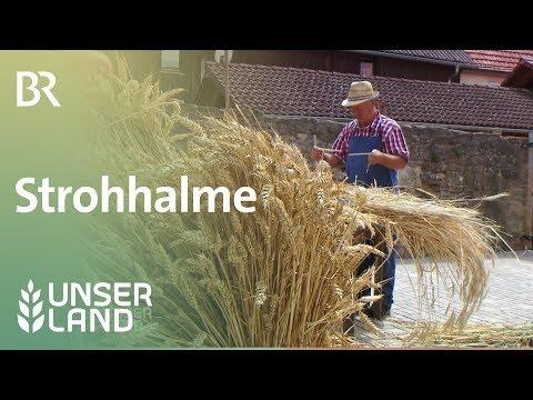 Strohhalme: Trinkhalme aus Roggenstroh   Unser Land   BR Fernsehen