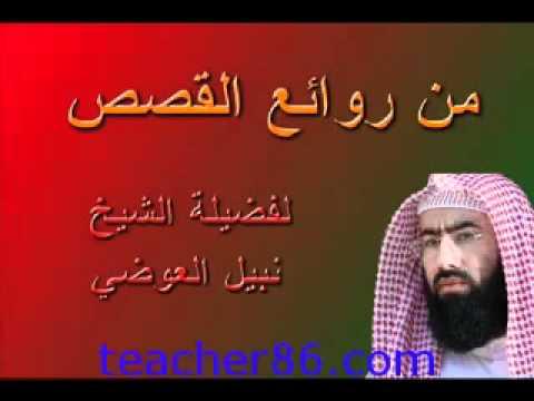 9isas nabil 3awadi