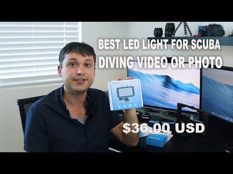Cheap and Best LED Lights for GoPro 3 4 5 6 7 & Sony X3000 for scuba underwater video photography