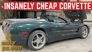 I BOUGHT A Running And Driving C5 CORVETTE Convertible For ONLY $5,000
