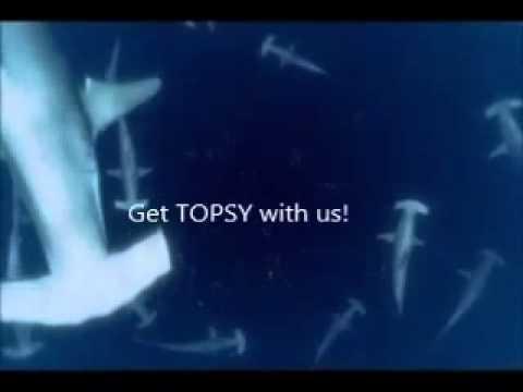 """""""I Bumped My Head"""" TOPSY 5.26.13"""