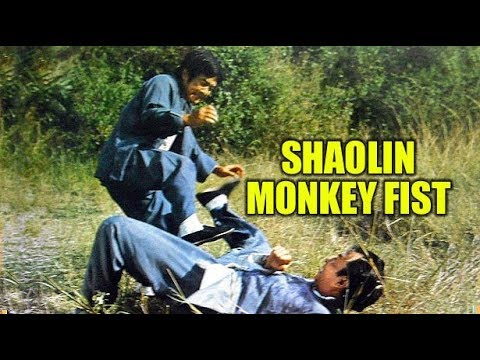 DOWNLOAD: Wu Tang Collection - Snake In The Monkey Shadow