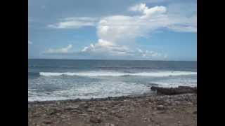preview picture of video 'Coconut Walk, Nevis, Windward Coast.'