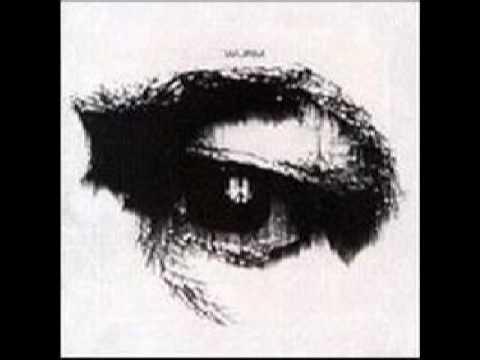 Die Abtragung der Würmer aus dem Auge