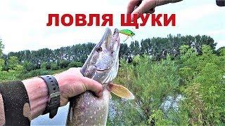 Рыбалка на щуку место в ростов