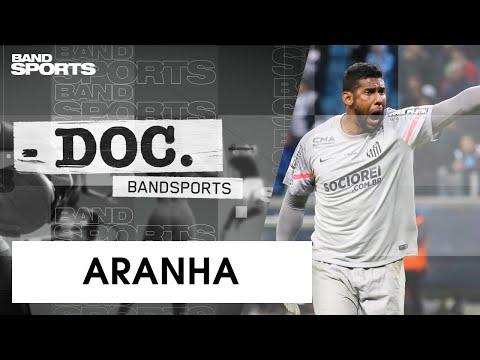 ARANHA: