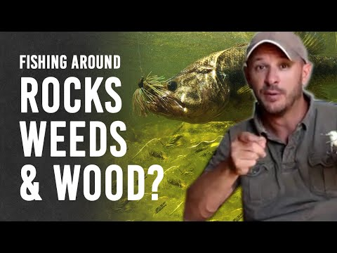 Best Lures for Bass Fishing Around Wood, Weeds and Rock