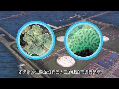 藻礁我們一起愛護!第三天然氣接收站「迴避替代方案」降低生態衝擊