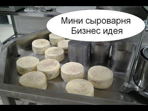 Мини сыроварня. Бизнес идея