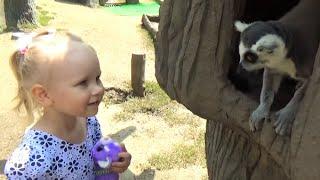 Алиса в Сафари парке Зоопарк Динозавры развлечение для детей Safari Park Zoo Dinosaurs