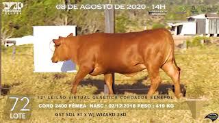 Coro 2400 b4 fiv