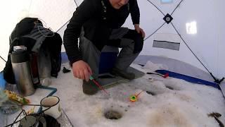 Рыбалка на шершневском водохранилище 2019