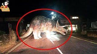 10 ไดโนเสาร์ตัวจริง ที่ถูกกล้องถ่ายไว้ได้ ( จริงหรือหลอก? )
