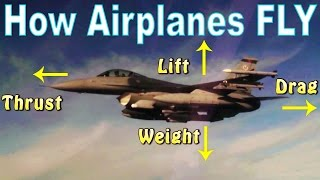 Ep. 5: How Airplanes Fly | The Four Forces of FLIGHT!