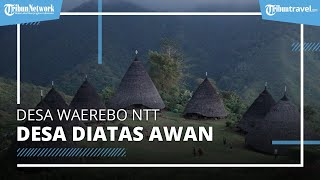 Mengintip Indahnya Desa Waerebo di NTT, Desa Terindah di Indonesia
