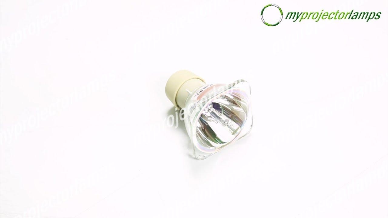 Optoma EZ524X Bare Projector Lamp-MyProjectorLamps.com