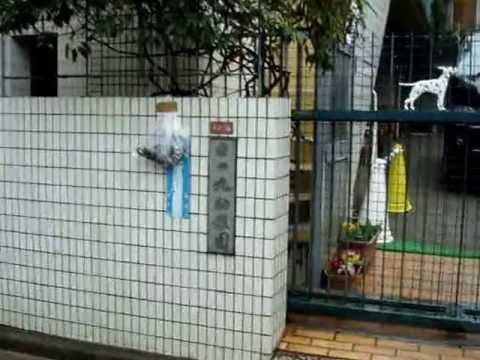 Hinomaru Yochien 日の丸幼稚園