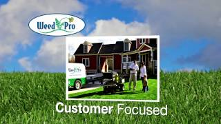 Weed Pro_Corporate Video