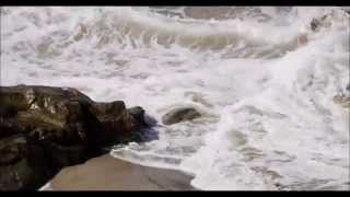 Water for the Soul Music Video by Dyan Garris (Official Video)