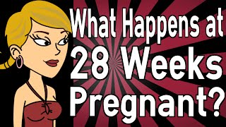 What Happens at 28 Weeks Pregnant?