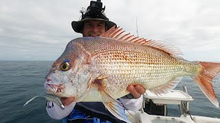 Summer Snapper: Fishing On A Low Fish Activity Day
