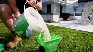 Nutrients for a Healthy Winter Lawn | Potassium & Iron