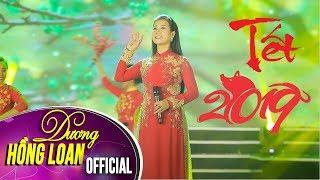Tết Lì Xì - Dương Hồng Loan [Xuân Kỷ Hợi 2019]