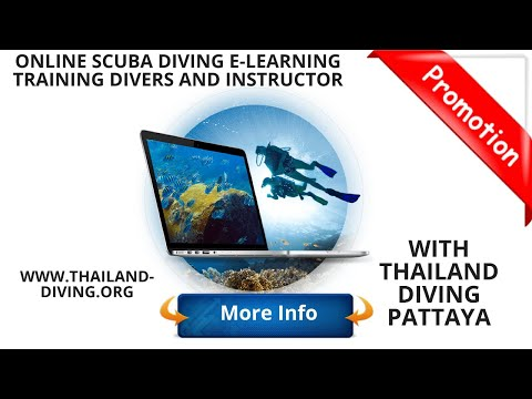 Online Scuba diving #e-Learning training divers and instructor with ...