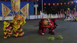 马来西亚沙巴州拿笃客家公会麒麟团 @ 拿笃德教会紫瑜阁2018新春晚会表演