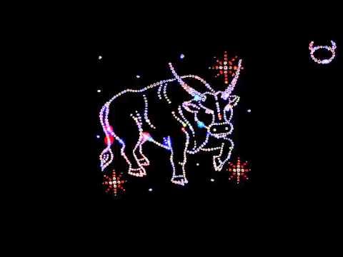 Гороскоп льва кота на 2017 год