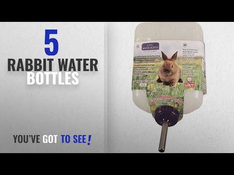 Best Rabbit Water Bottles [2018]: Lixit Corporation SLX0670 All Weather Rabbit Water Bottle,