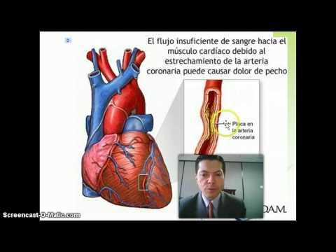 Protocolo de tratamiento de la hipertensión