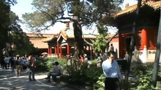 Video : China : Forbidden City scenes - video