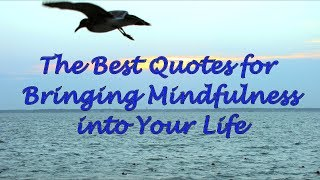 The Best Quotes For Bringing Mindfulness Into Your Life