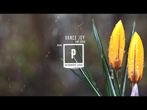 Vance Joy - Like Gold ( Instrumental )