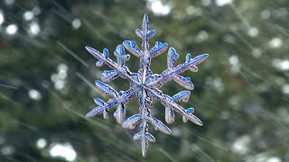 Snowflakes photographed by new high-speed camera