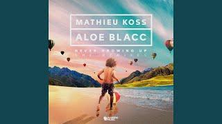 Never Growing Up (Mathieu Koss Festival Mix)