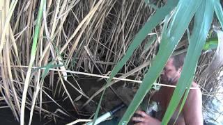 Браконьерам привет!!!Видео для раздела разное(Дневник рыболова)