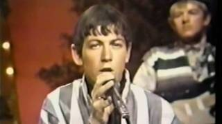 The Animals & Eric Burdon - When I Was Young